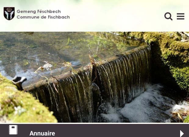 Screenshot: Homepage Gemeinde Fischbach