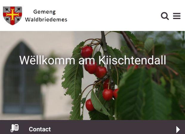 Screenshot: Homepage Gemeinde Waldbredimus